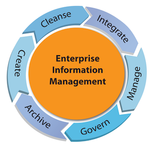 Enterprise Information Management Systems